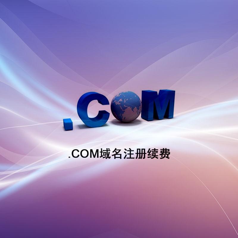.com 域名注册续费